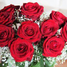 Rose Queen Gala